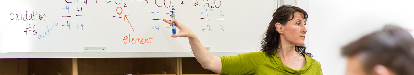 Academics Banner Image - image of a teacher pointing at white board